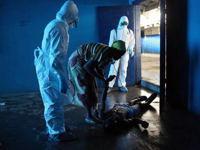 Как с помощью ит борются с лихорадкой эбола