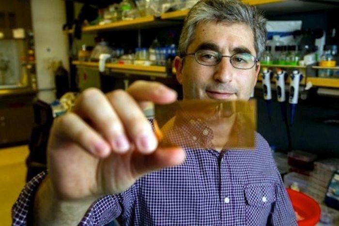 Плазмонный микрочип определит тип диабета